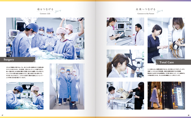 動物病院おしゃれパンフレット_会社案内_中面3